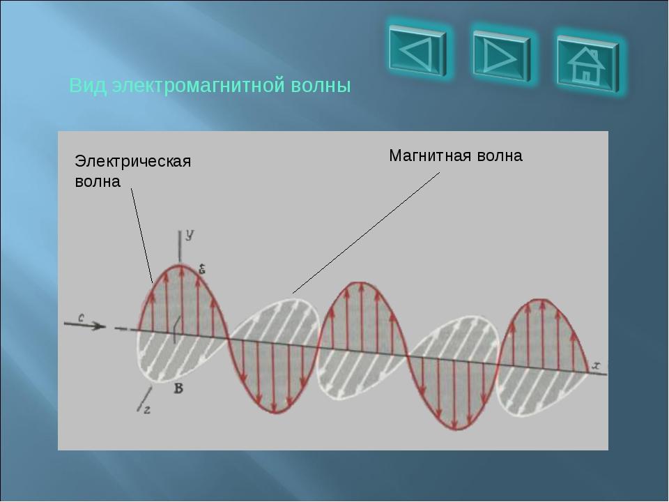 Вид электромагнитной волны Электрическая волна Магнитная волна