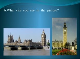 6.What  can  you  see  in  the  picture?