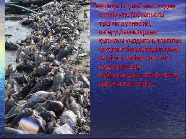 Теңізіндегі мұнай мен газдың өндірілуіне байланысты тіршілік дүниесінің өзгер...