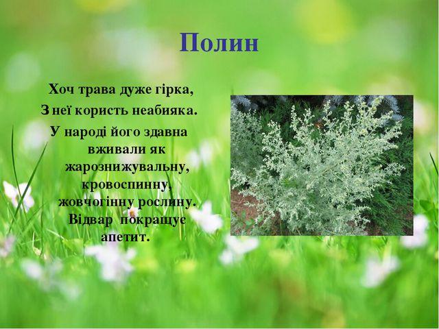 Полин Хоч трава дуже гірка, З неї користь неабияка. У народі його здавна вжи...