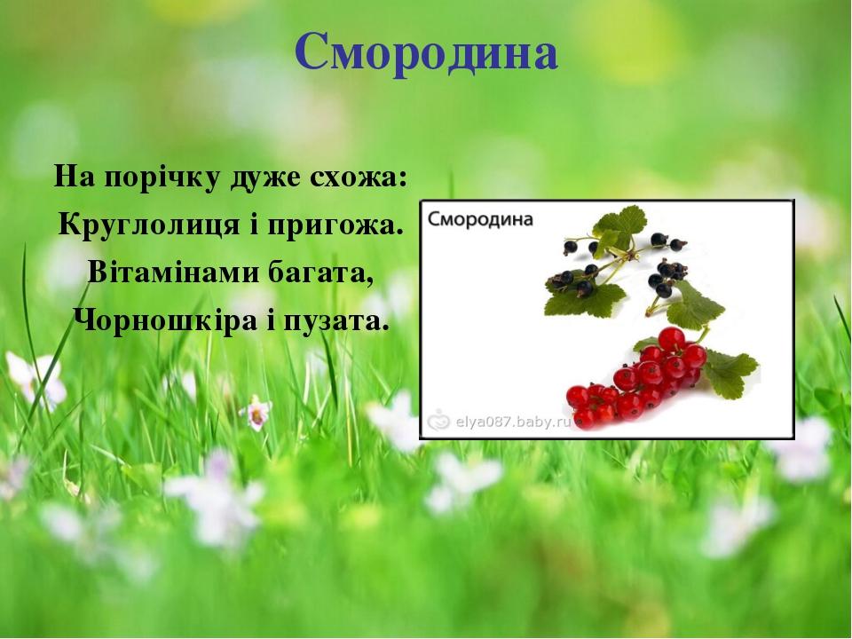 Смородина На порічку дуже схожа: Круглолиця і пригожа. Вітамінами багата, Чор...