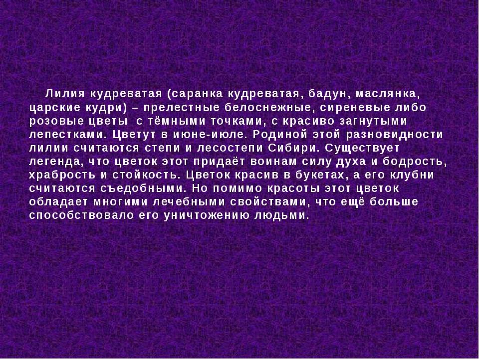 Лилия кудреватая(саранка кудреватая, бадун, маслянка, царские кудри) – прел...