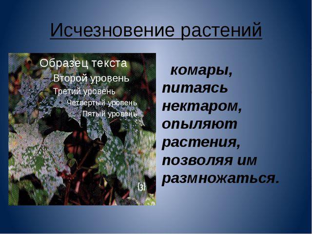Исчезновение растений комары, питаясь нектаром, опыляют растения, позволяя им...