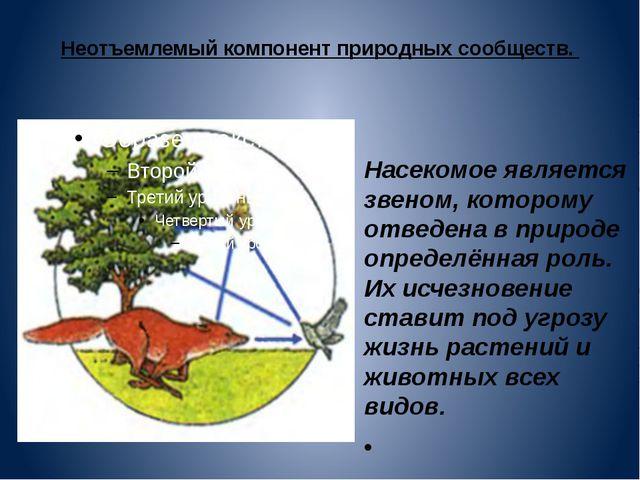 Неотъемлемый компонент природных сообществ. Насекомое является звеном, которо...