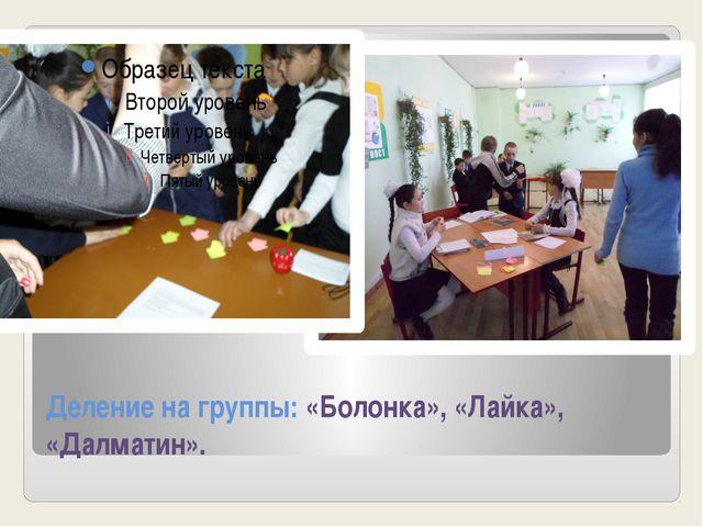 Деление на группы: «Болонка», «Лайка», «Далматин».
