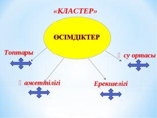 «КЛАСТЕР» Өсу ортасы Қажеттілігі Ерекшелігі Топтары