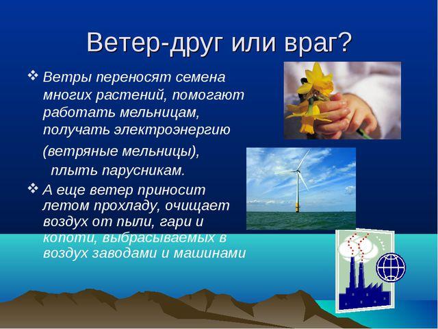 Ветер-друг или враг? Ветры переносят семена многих растений, помогают работат...