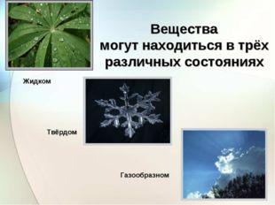 Вещества могут находиться в трёх различных состояниях Жидком Твёрдом Газообра