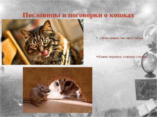 Пословицы и поговорки о кошках «Знает кошка, чье мясо съела» «Кошке игрушки,