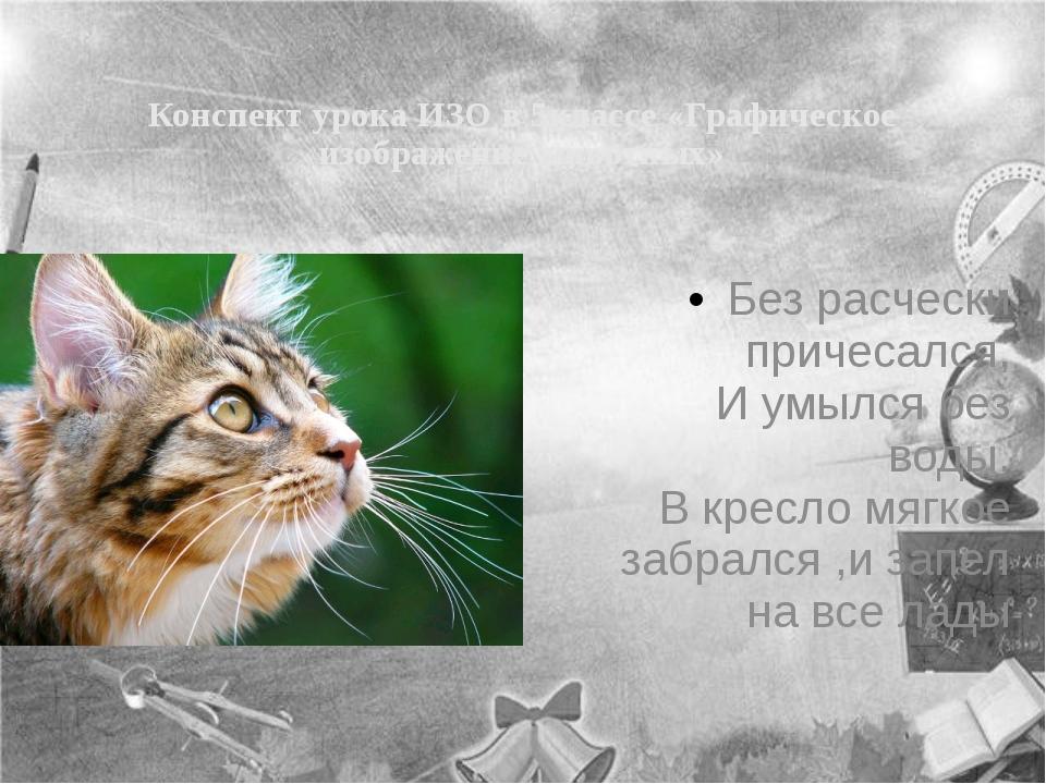 Конспект урока ИЗО в 5классе «Графическое изображение животных» Без расчески...