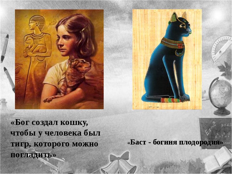 «Бог создал кошку, чтобы у человека был тигр, которого можно погладить» /Викт...