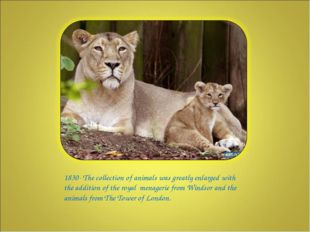 1830- The collection of animals was greatly enlarged with the addition of th