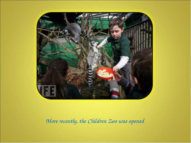 More recently, the Children Zoo was opened