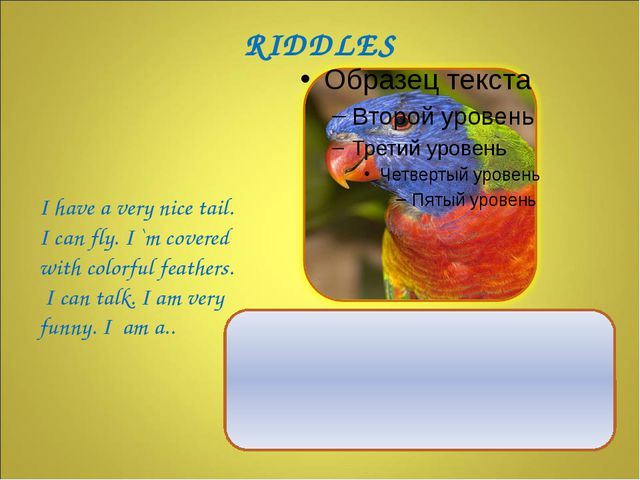 I have a very nice tail. I can fly. I `m covered with colorful feathers. I c...