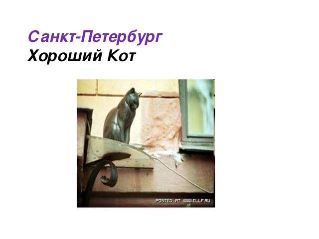 Санкт-Петербург Хороший Кот