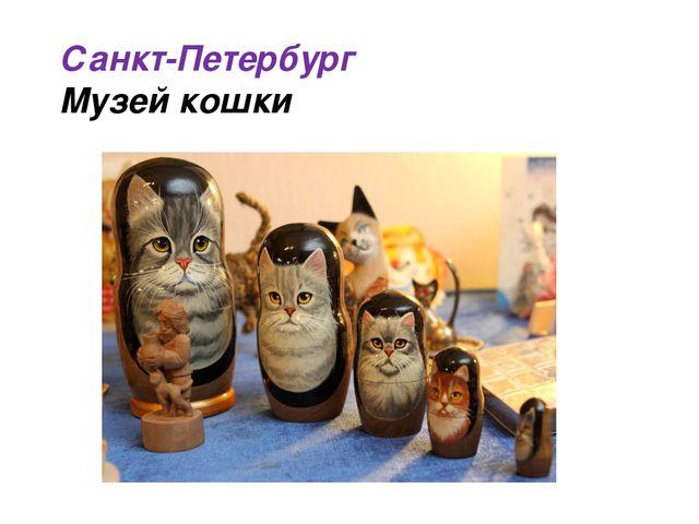 Санкт-Петербург Музей кошки