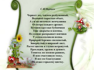 С.Я.Маршак Чернеет лес, теплом разбуженный, Весенней сыростью объят, А уж на