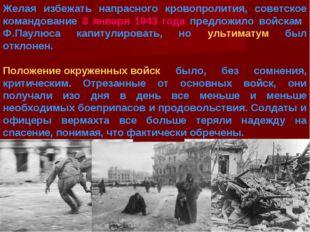 Желая избежать напрасного кровопролития, советское командование 8 января 1943
