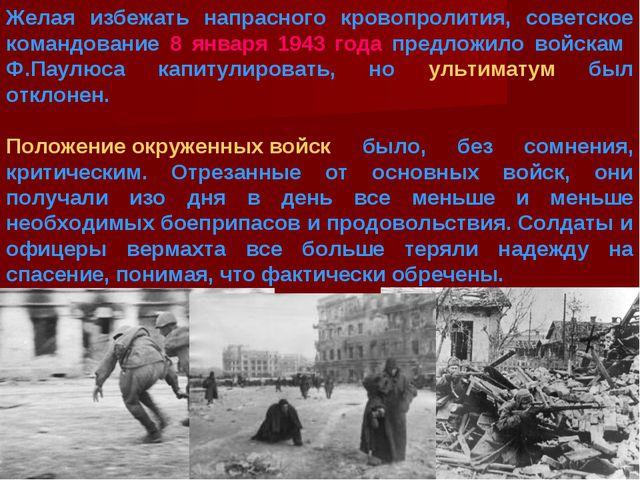 Желая избежать напрасного кровопролития, советское командование 8 января 1943...