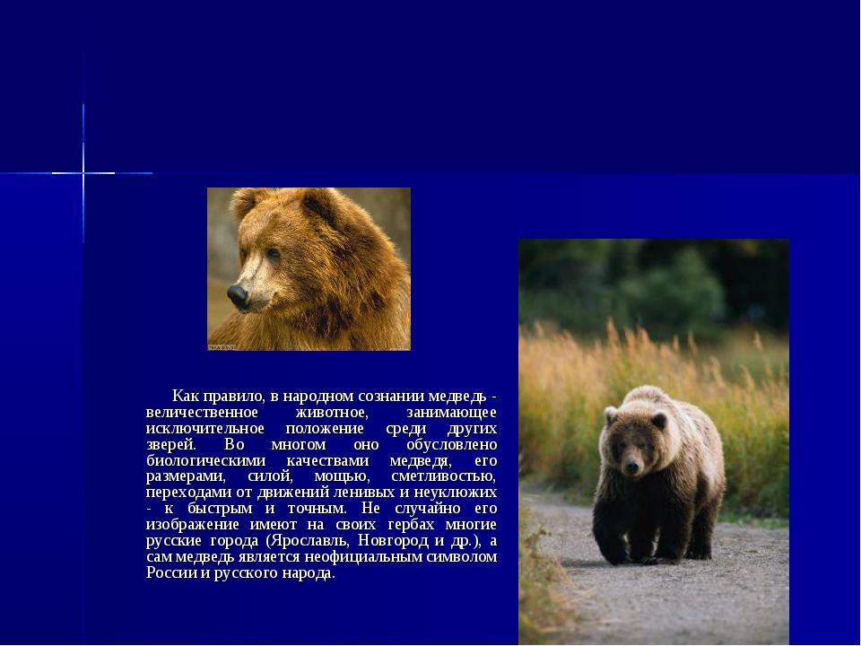 Как правило, в народном сознании медведь - величественное животное, занимающ...