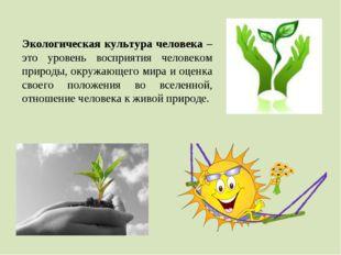 Экологическая культура человека – это уровень восприятия человеком природы, о
