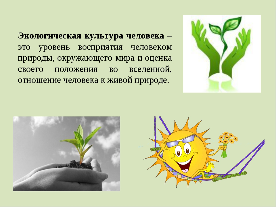 Экологическая культура человека – это уровень восприятия человеком природы, о...