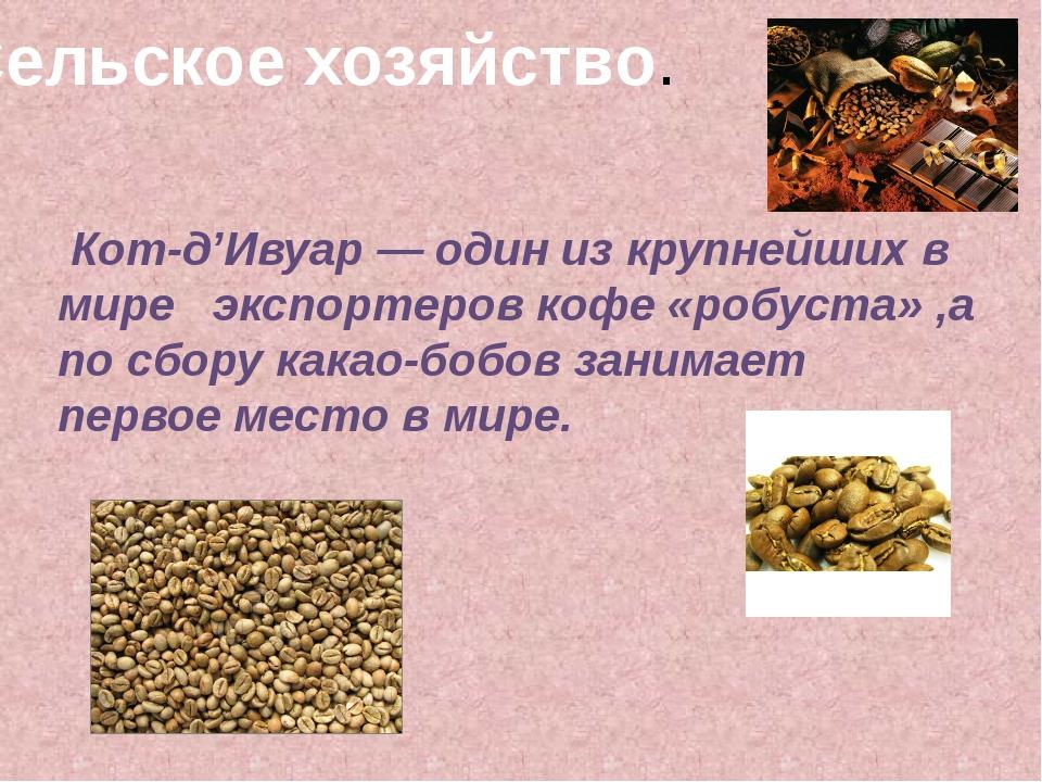 Сельское хозяйство. Кот-д'Ивуар— один из крупнейших в мире экспортеров кофе...