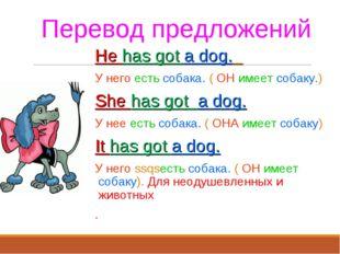 Перевод предложений He has got a dog. У него есть собака. ( ОН имеет собаку.