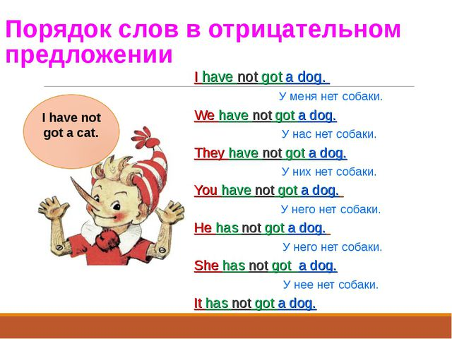 Порядок слов в отрицательном предложении I have not got a dog. У меня нет cоб...