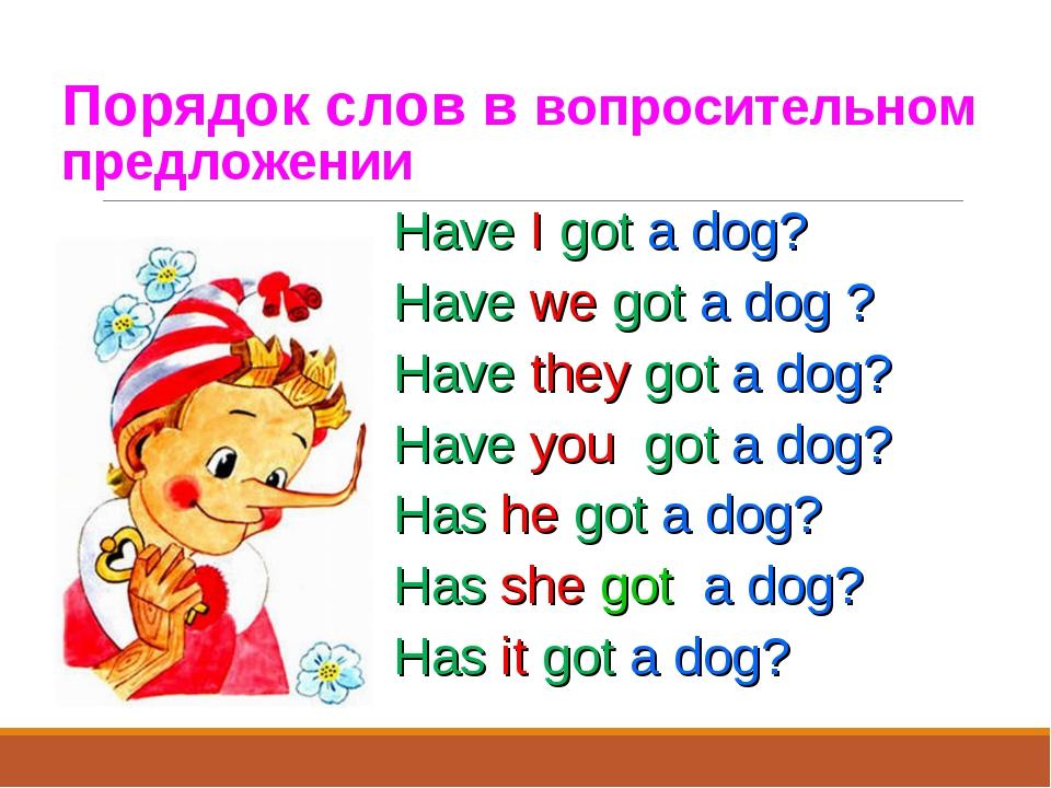 Порядок слов в вопросительном предложении Have I got a dog? Have we got a dog...