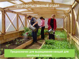 Продовольственный отдел Предназначен для выращивания овощей для школьной стол