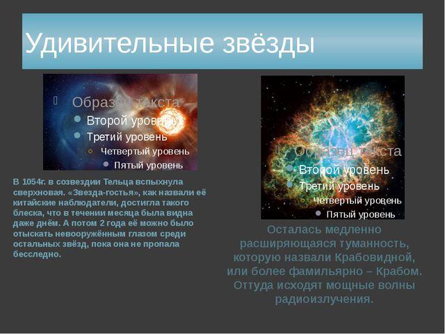 Удивительные звёзды В 1054г. в созвездии Тельца вспыхнула сверхновая. «Звезда...