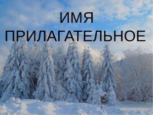 Особенно хороши ели(роскошный, зимний) уборе. ИМЯ ПРИЛАГАТЕЛЬНОЕ