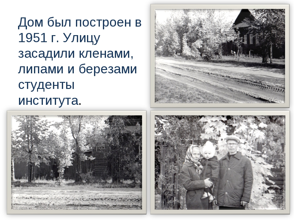 Дом был построен в 1951 г. Улицу засадили кленами, липами и березами студенты...