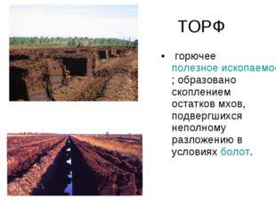 ТОРФ горючееполезное ископаемое; образовано скоплением остатков мхов, подве