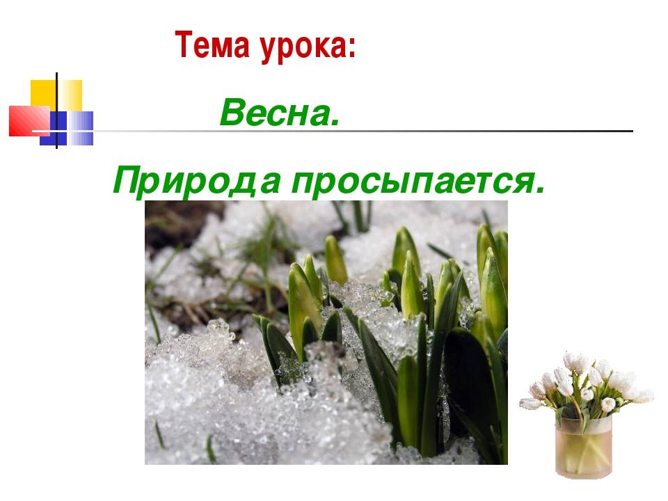 Тема урока: Весна. Природа просыпается.