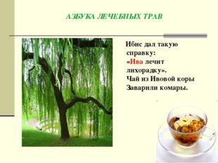 АЗБУКАЛЕЧЕБНЫХ ТРАВ Ибис дал такую справку: «Ивалечит лихорадку». Чай изИв