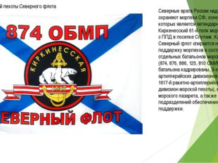 Части морской пехоты Северного флота Северные врата России надежно охраняют м