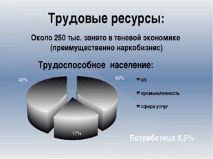 Трудовые ресурсы: Около 250 тыс. занято в теневой экономике (преимущественно