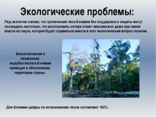 Экологические проблемы: Ряд экологов считает, что тропические леса Боливии б