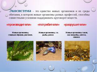 Экосистема – это единство живых организмов и их среды обитания, в котором жив