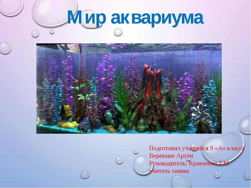 Мир аквариума Подготовил учащийся 9 «А» класса Верёвкин Артём Руководитель: К...