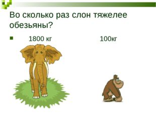Во сколько раз слон тяжелее обезьяны? 1800 кг 100кг
