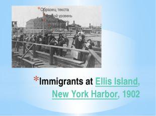 Immigrants at Ellis Island, New York Harbor, 1902