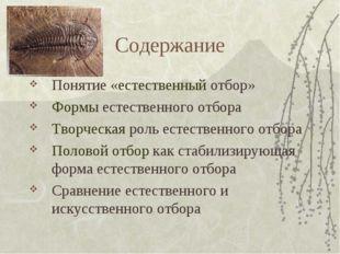Содержание Понятие «естественный отбор» Формы естественного отбора Творческая