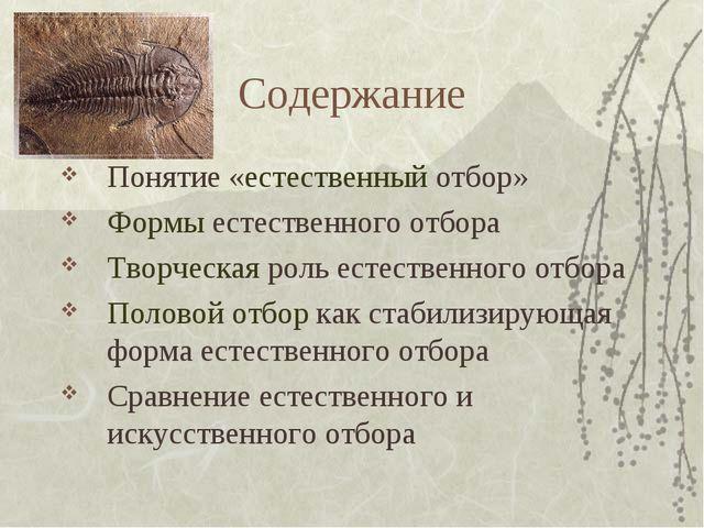 Содержание Понятие «естественный отбор» Формы естественного отбора Творческая...