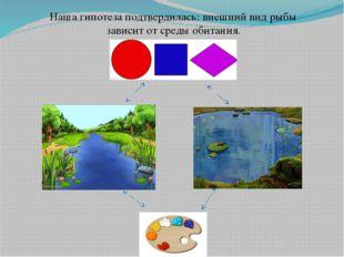Наша гипотеза подтвердилась: внешний вид рыбы зависит от среды обитания.