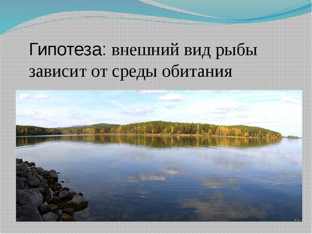 Гипотеза: внешний вид рыбы зависит от среды обитания