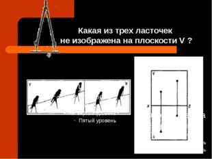 Какая из трех ласточек не изображена на плоскости V ?