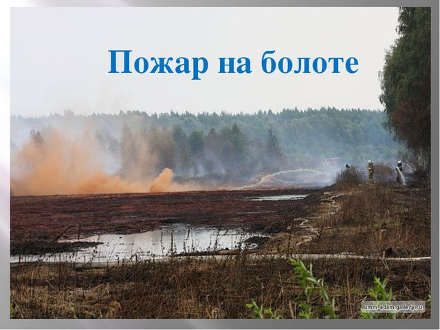 Пожар на болоте